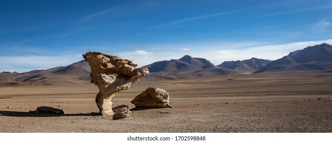 Uyuni / Bolivia - 06 10 2019: Rock tree with mountains in the background