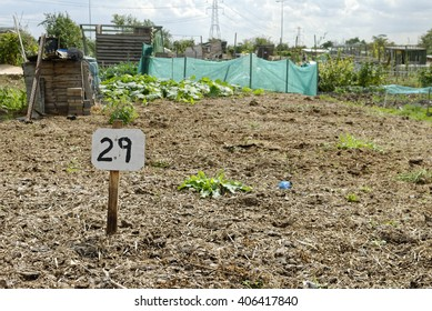 Vacant Plot, Allotment Garden where land is made available for personal cultivation of fruit and vegetables.