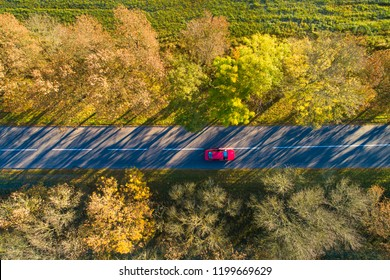 Vacation background. Autumn background. Red car on road from above. Red car moving on autumn road in colorful forest. Fall scene.