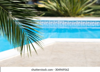 Vacation background with swimming pool and palm leaf
