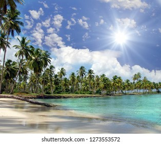 Vacation on beautiful and lonely sandy beach in a paradise on Samana in the Caribbean with palms, sky, clouds, sun and palms