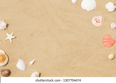 vacation and summer holidays concept - seashells on beach sand