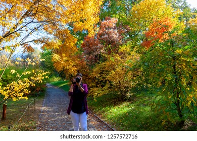 Vacratot Hungary Oct 11 2018: Unidentified lady in  the fall colored forest alone.