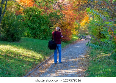 Vacratot Hungary Oct 25 2018: A photographer taking a Gorgeous autumn landscape panorama of a scenic forest with lots of warm sunshine image.