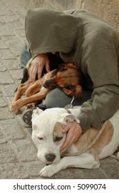 A vagabond with dogs sitting on a sidewalk.