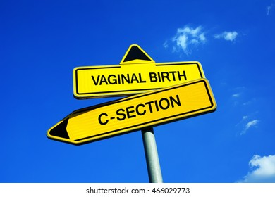 Vaginal delivery images stock photos vectors shutterstock vaginal birth vs c section traffic sign with two options natural delivery vs ccuart Images
