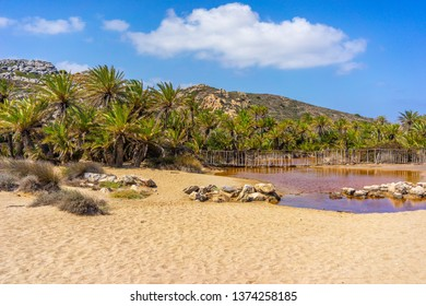 Vai palmtrees bay and beach at Crete island in Greece