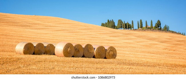 VAL D'ORCIA, ITALY - JULY 17: Beautiful typical tuscan landscape in summer, on July 17, 2017 in  Val d'Orcia, Tuscany  Italy