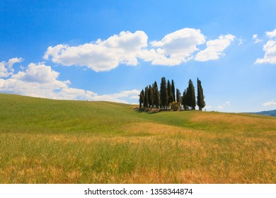 VAL D'ORCIA, ITALY - JUNE 06, 2017: Val d'Orcia cypresses view, Chianti, Tuscany.