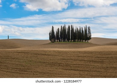VAL D'ORCIA, ITALY- MARCH 29:  Cypress trees near San Quirico d'Orcia on March 29, 2018 in Val D'Orcia, Italy