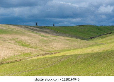 VAL D'ORCIA, ITALY- MARCH 29: Green rolling hills near San Quirico d'Orcia on March 29, 2018 in Val D'Orcia, Italy