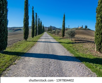 VAL D'ORCIA, ITALY - NOVEMBER 30, 2016: Amazing landscape on the Tuscan hills.