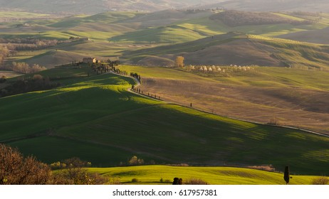 Val d'Orcia landscape. Italy, 2017.