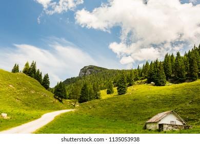 Val Galmarara - Altopiano di Asiago - Vicenza