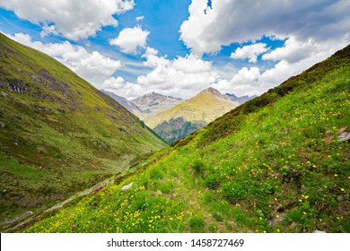 Val Grosina - Val Pedruna - Valtellina (IT) - Summer overview of the valley with blooming rhododendrons