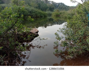 Valapattanam River originates from the Brahmagiri hills in bramhagiri Reserve Forest in Karnataka at an altitude of 900-1350m above mean sea level and drains into Kannur district.