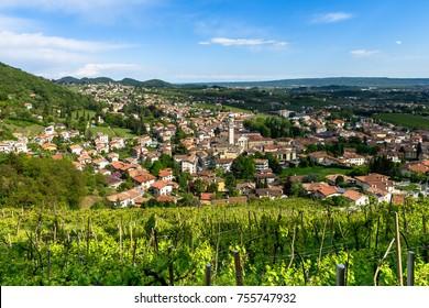 Valdobbiadene,Treviso, prosecco land