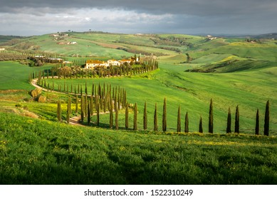 VALDORCIA, TUSCANY/ITALY, april 12, 2019 - Typical green Tuscany landscape in Val d'Orcia with a winding road, fields, cypresses and blue sky, Toscana, Italia, Italy
