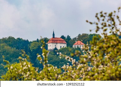 Valdstejn, Czech Republic - May 5 2019: A view of Valdstejn castle in Bohemian Paradise built in 13th century standing on a green hill, overcast blue sky. Tree in blossom in foreground.