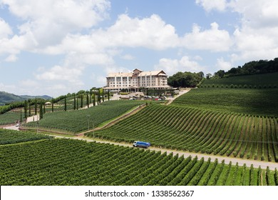 VALE DOS VINHEDOS , BRASIL - JANEIRO 22, 2017: Located in the mountains of Rio Grande do Sul is one of the main tourist attractions of Brazil, with several wineries.