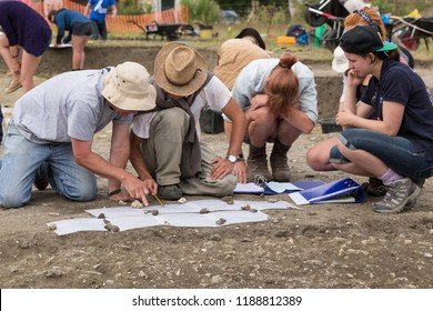 Vale of Pewsey, Wiltshire, England - July 9 2015 : Archaeologists excavating (digging) Neolithic Monuments