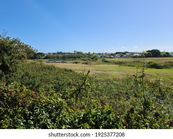 Vale Pond, Guernsey Channel Islands