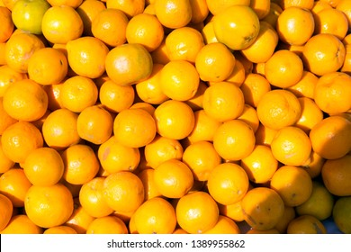 Valencia orange The Valencia orange is a sweet orange. It was first hybridized by pioneer American agronomist and land developer William Wolfskill in the mid-19th century on his farm i
