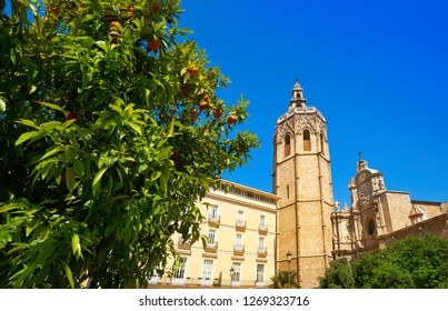 Valencia Plaza de la Reina square Miguelete also Micalet tower in Spain