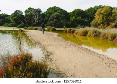 Valencia, Spain - December 8, 2018: Visitors to the natural park of Albufera de Valencia, strolling along the paths that have been left free after intense rains.