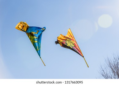 Flag-waver Images, Stock Photos & Vectors | Shutterstock