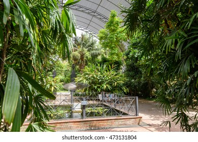 VALENCIA, SPAIN - JULY 20, 2016: The Botanical Garden of University of Valencia (Jardin Botanico de la Universidad de Valencia) Was Created In 1499 And Has The Current Location In The City From 1802.