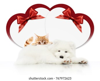 valentine gift card or pets store signboard with cat and dog together heart shape and red ribbon bow on white background blank template and copy space