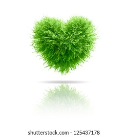 Valentine tree, love concept, heart shape leaves over white background