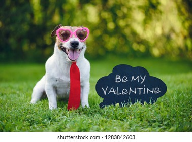 "Valentines card greeting with dog wearing tie and glasses next to inscription on blackboard  ""Be my valentine"""
