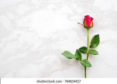 Valentine's day background, template, Red rose, love symbol, on white marble background with copy space for text,  flat lay