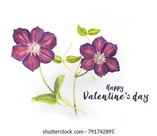 Valentine's day card with Hand drawn purple Clematis