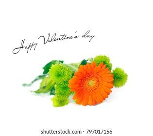 Valentine's day card with Orange Herbera