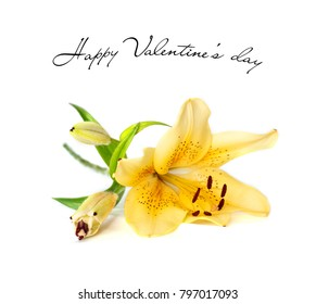 Valentine's day card with Yellow lily