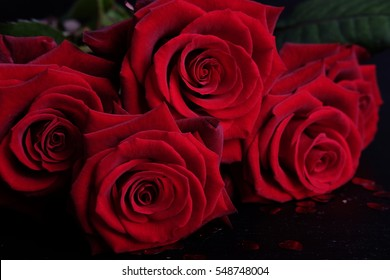 Valentine's Day celebration present red roses bouquet symbol of love and passion