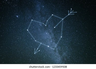 Valentine's day concept. A constellation of love in the starry sky. Heart and cupid arrow