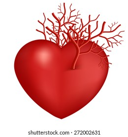 Valentines Day Heart symbol with vascular