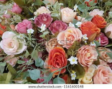 Valentines Day Love 2019 Beautiful Roses Use Stock Photo Edit Now