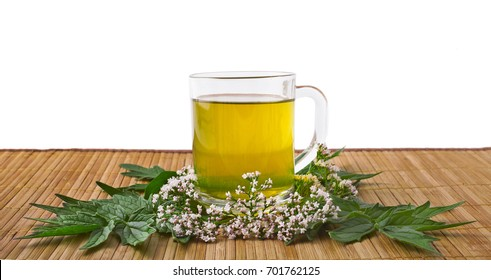 Valerian herb flower sprigs with a cup of tea on a white background
