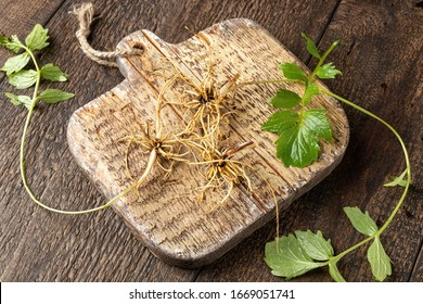Valerian roots with fresh leaves