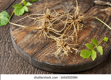 Valerian roots on a cutting board, with fresh leaves in the background