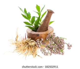 valerian (Valeriana officinalis) - rhizome, blossoms and leafs with mortar on white background