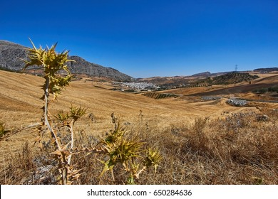 Valle de Abdalajís is a town and municipality in the province of Málaga, part of the autonomous community of Andalucía in southern Spain.