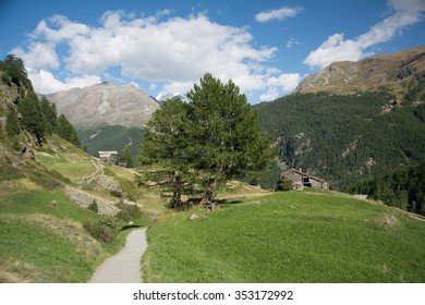 Valley in the Alps with  path, Swiss