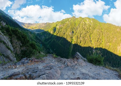 valley of the balea stream in fagaras mountains. view from the rocky cliff on a steep slope. forested hillside in the distance. popular travel destination of romania. sunny summer morning