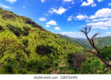 Valley below Little Adam's Peak near Ella, Sri Lanka. The area surrounding Ella has a rich bio-diversity, dense with numerous varieties of flora and fauna